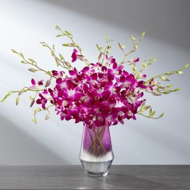 The FTD Pink at Heart Orchid Bouquet