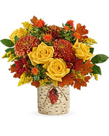 Teleflora Golden Birch Bouquet