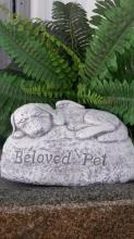 Beloved Pet For Dog